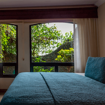 ROOMS IN THE CLOUD FOREST